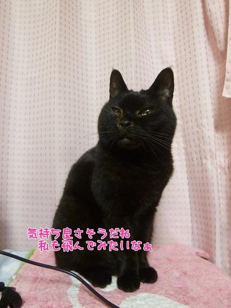P1650920編集②.jpg