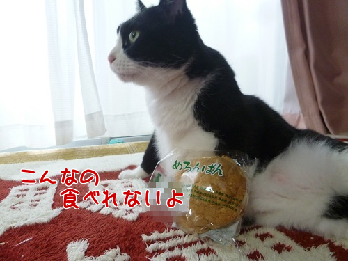P1760305編集②.png