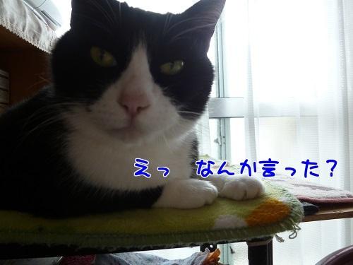 P1770322編集②.jpg