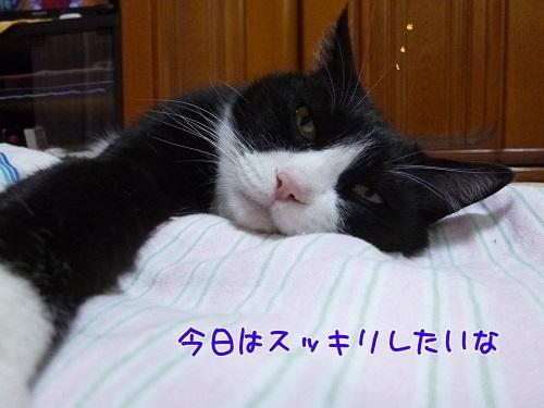 P1790638編集②.jpg