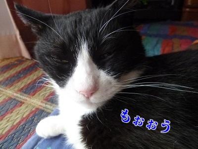 P1890070編集②.jpg