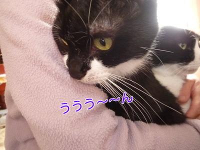 P1920753編集②.jpg