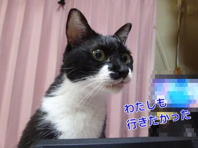 P1920968編集.jpg