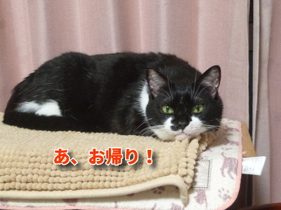 P1930640編集②.jpg