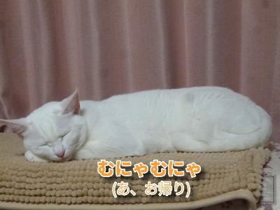 P1930658編集②.jpg