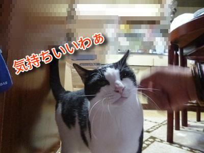 P1940045編集②.jpg